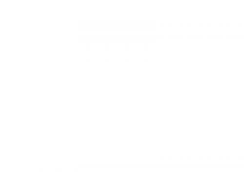 Vinnustaðaeftirlit – fjórir handteknir